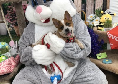 Meeting the Easter Bunny!